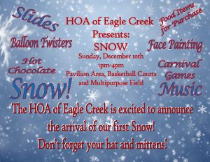 The HOA of Eagle Creek Presents: SNOW @ Pavilion Recreation Center | Orlando | Florida | United States